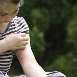 Кілька народних способів боротьби з комарами і їх укусами