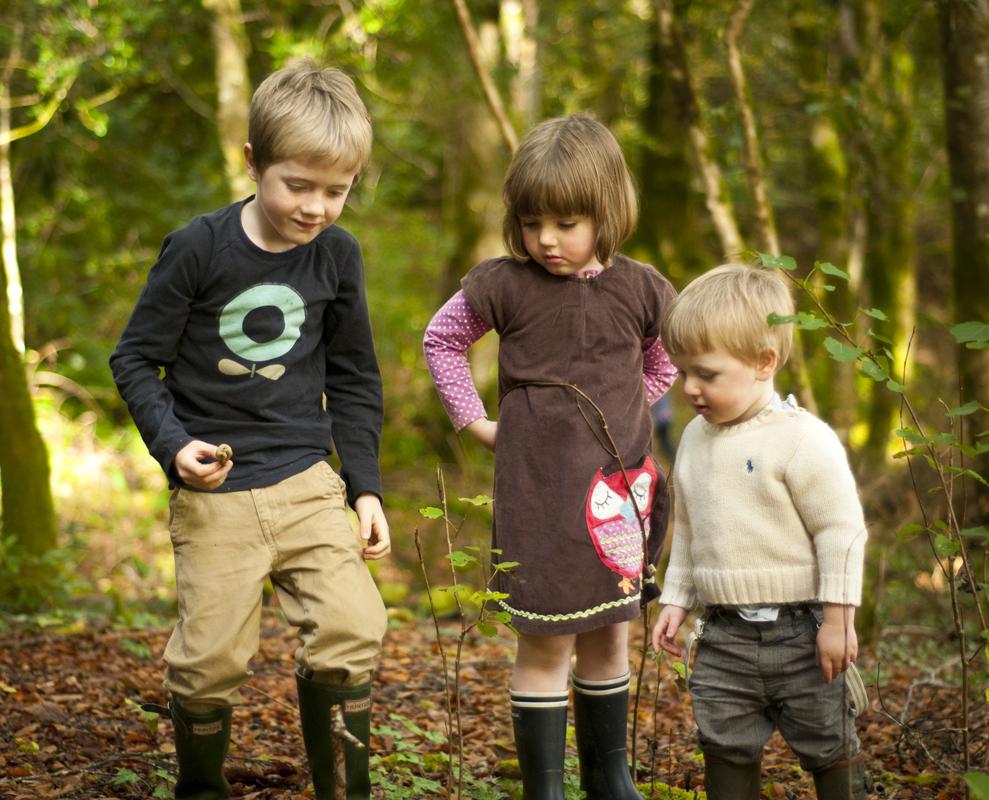 Діти збирають гриби