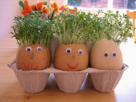 Рослини в яйці