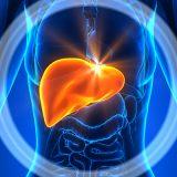 Здорова печінка – здоровий весь організм: Як очистити печінку?