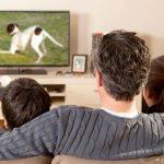 Як правильно вибрати телевізор?