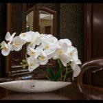 Незвичний спосіб пересаджування орхідей. Ваші гості будуть у захваті!