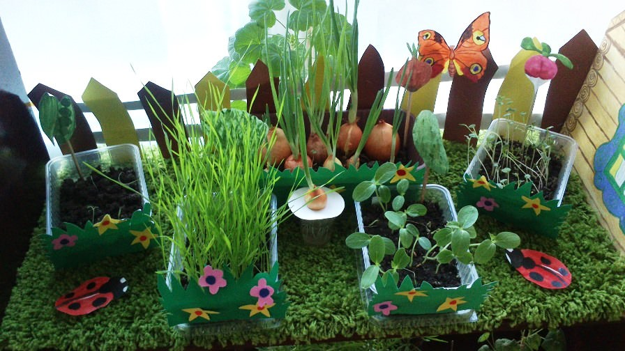 Вирощування продуктів на підвіконні